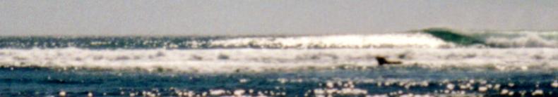 bIG dUMPING wAVE